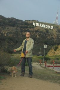 hollywood_signs_dogs